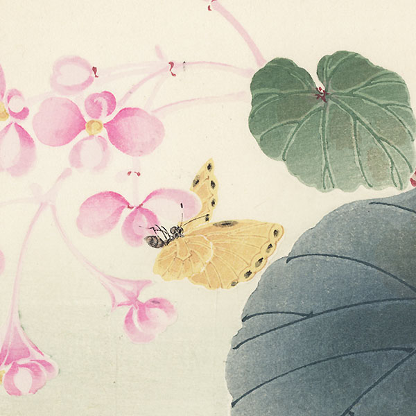 Begonia and Butterfly by Nagamachi Chikuseki (active circa 1900)