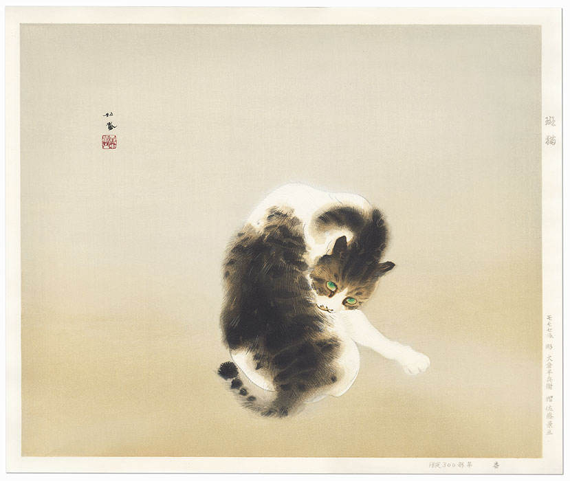 Tabby Cat by Takeuchi Seiho (1864 - 1942)