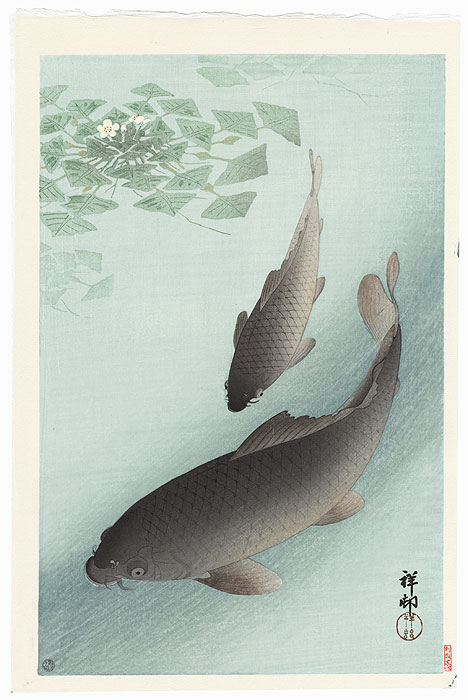 Two Carp and Blooming Water Plants by Ohara Shoson (1877 - 1945)