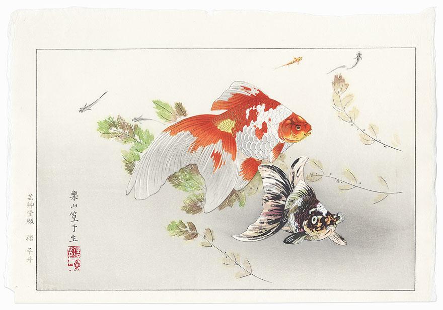 Goldfish by Rakusan Tsuchiya (1896 - 1976)