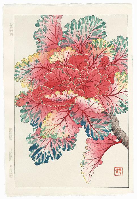 Ornamental Cabbage by Kawarazaki Shodo (1889 - 1973)