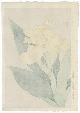 Canna by Kawarazaki Shodo (1889 - 1973)
