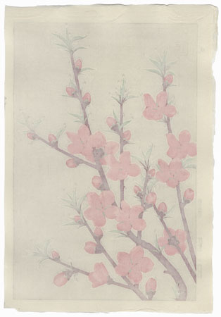 Peach by Kawarazaki Shodo (1889 - 1973)
