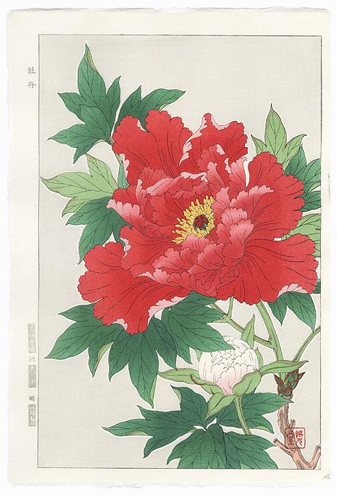 Red Peony by Kawarazaki Shodo (1889 - 1973)