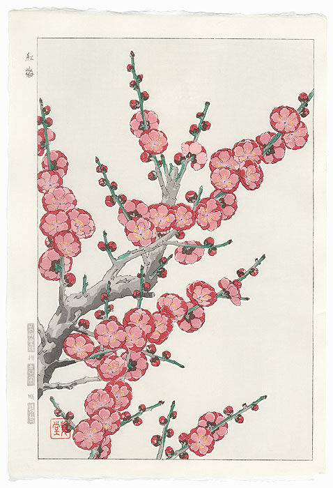 Red Plum by Kawarazaki Shodo (1889 - 1973)