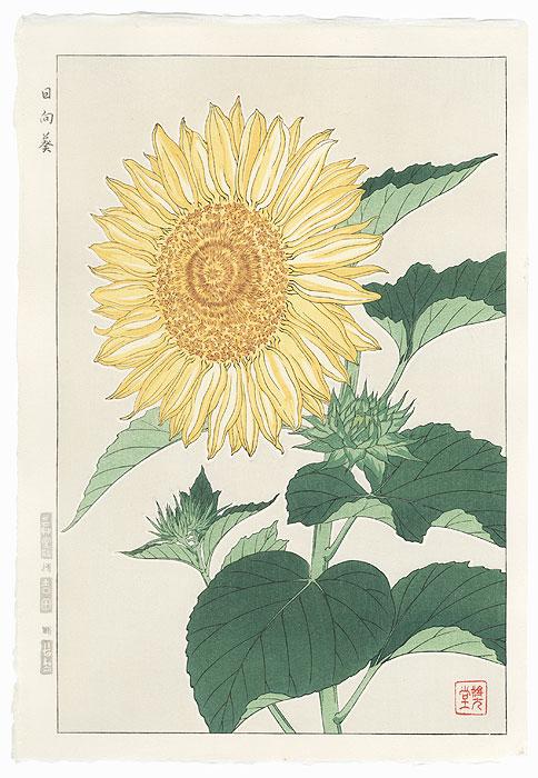 Sunflower by Kawarazaki Shodo (1889 - 1973)