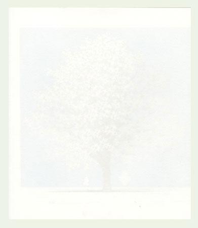 Dogwood 8, 2011 by Hajime Namiki (born 1947)