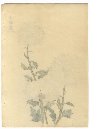 A Clearance Opportunity! Meiji or Edo era Original by Keika Hasegawa (active 1892 - 1905)