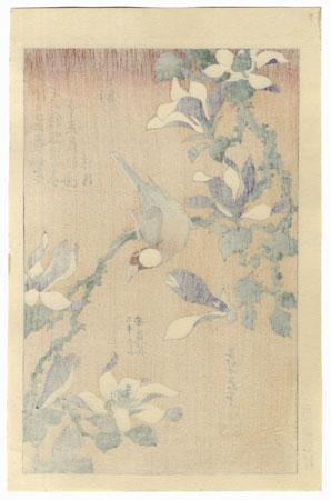 Java Sparrow and Magnolia by Hokusai (1760 - 1849)