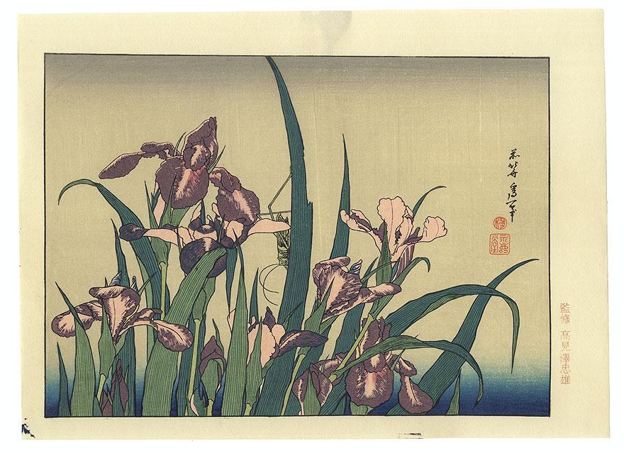 Irises and Grasshopper by Hokusai (1760 - 1849)