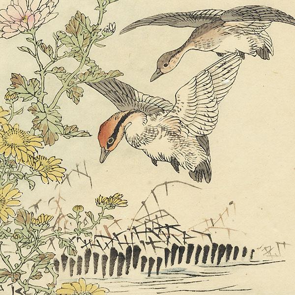 Geese Alighting by Kono Bairei (1844 - 1895)