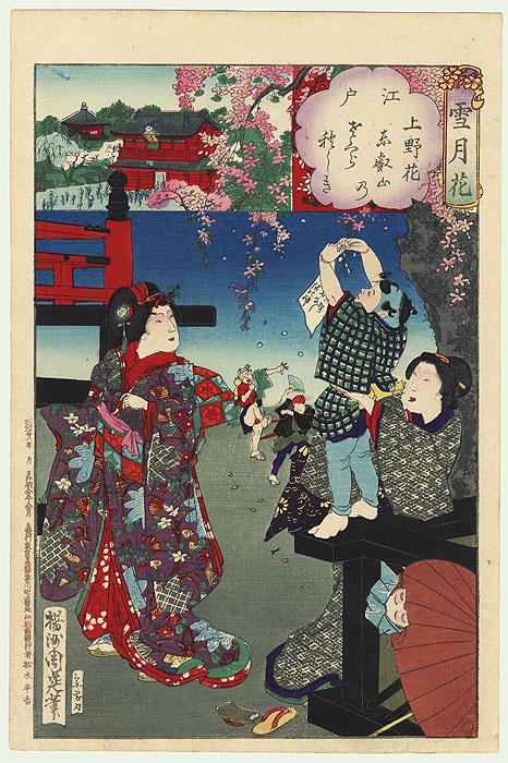 Edo, Flowers of Ueno, Mt. Toei Cherry Blossoms Tying, No. 2  by Chikanobu (1838 - 1912)