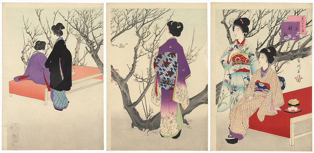 February: Plum Viewing by Miyagawa Shuntei (1873 - 1914)