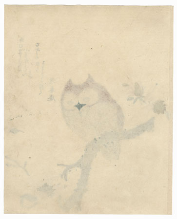 Horned Owl on Flowering Branch Surimono by Shunman (1757 - 1820)