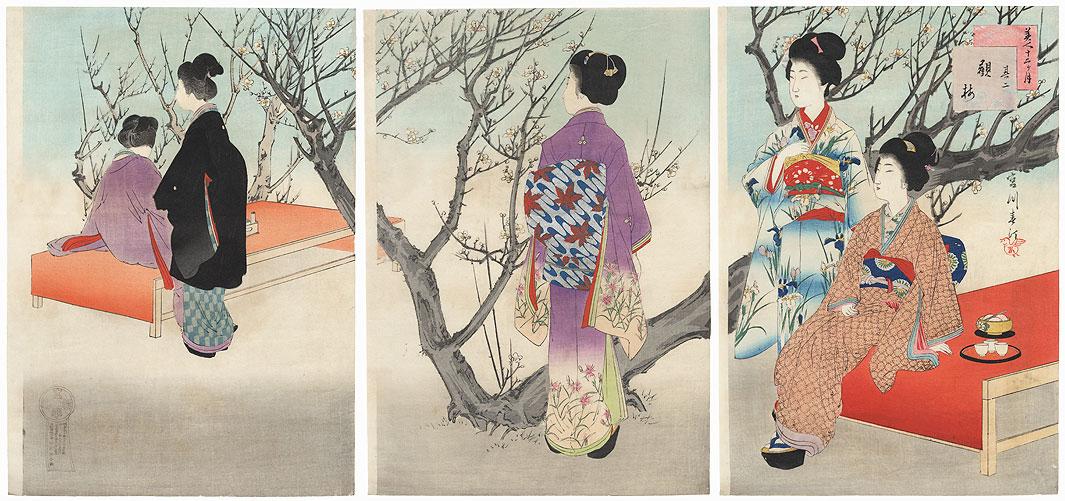 February: Plum Viewing by Miyagawa Shuntei (1873 - 1914)
