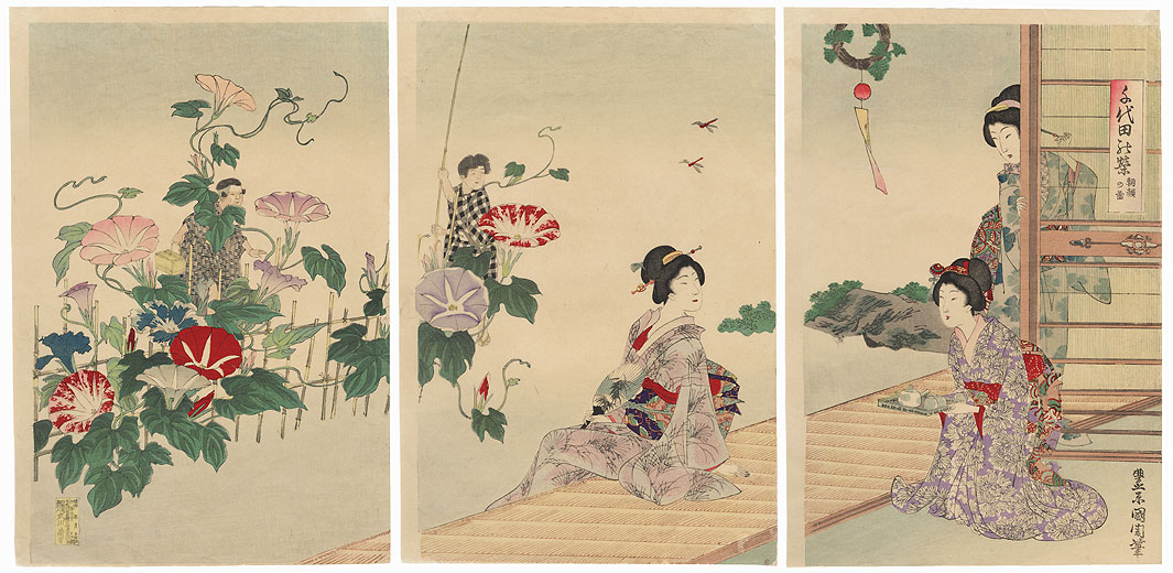 Beauties and Morning Glories by Kunichika (1835 - 1900)