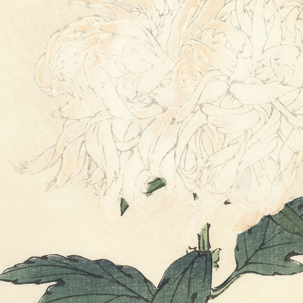 Snow on Bamboo Leaves Chrysanthemum by Keika Hasegawa (active 1892 - 1905)