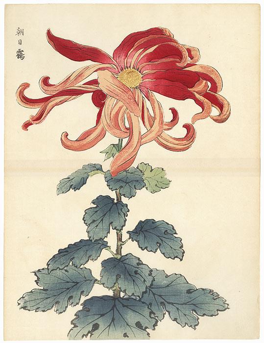 Crane against the Rising Sun Chrysanthemum by Keika Hasegawa (active 1892 - 1905)