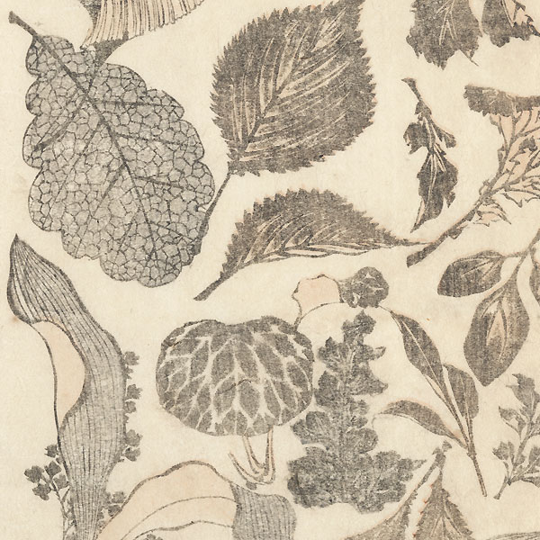 Leaves by Hokusai (1760 - 1849)