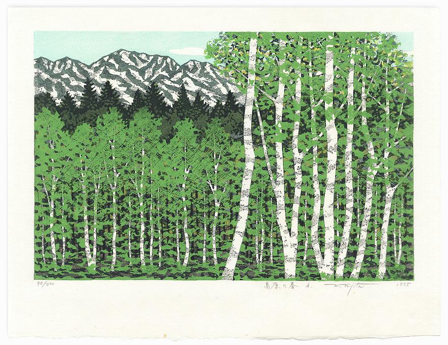 Spring in the Tableland, 1995 by Fumio Fujita (born 1933)