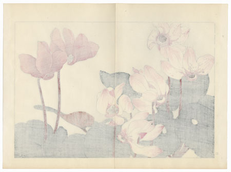 Cyclamen by Tanigami Konan (1879 - 1928)