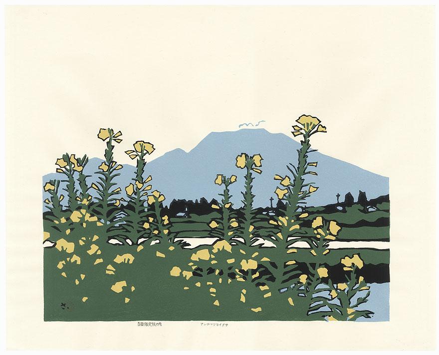 Flowers and Mountain by Miyata Saburo (1924 - 2013)
