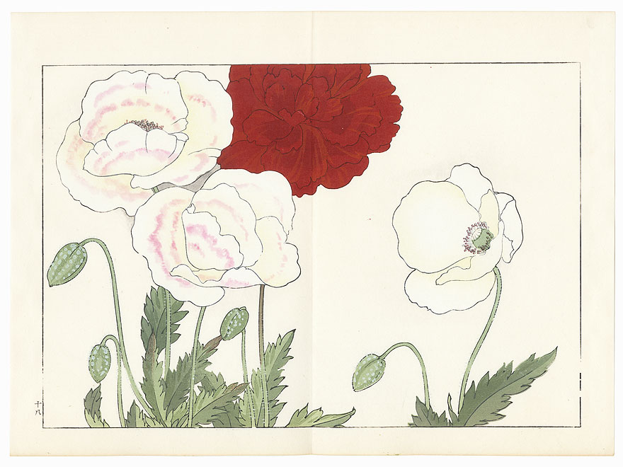 Poppy by Tanigami Konan (1879 - 1928)