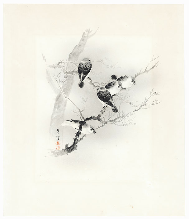Birds in a Tree by Shin-hanga & Modern artist (not read)
