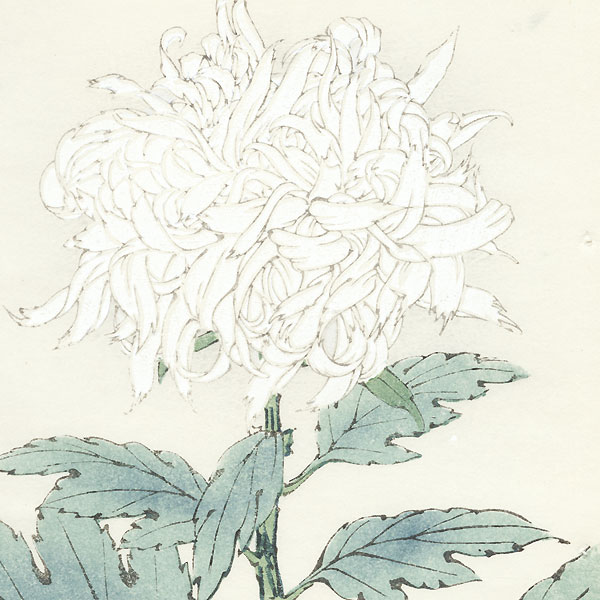 Snow on the Bamboo Leaves Chrysanthemum by Keika Hasegawa (active 1892 - 1905)
