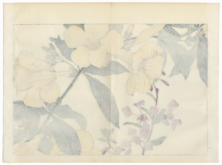 Allamandia and Clarkia by Tanigami Konan (1879 - 1928)