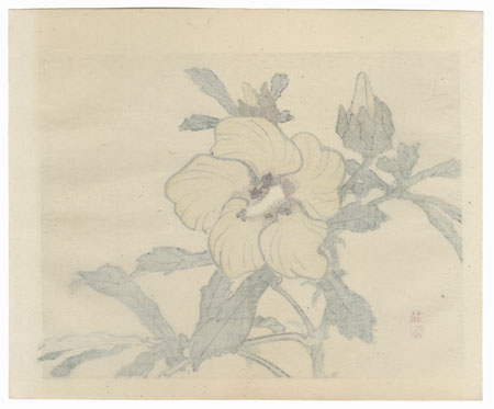 Hibiscus by Bairei (1844 - 1895)