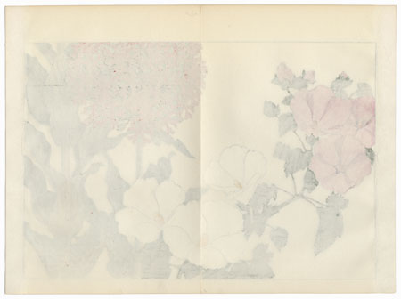 Lychnis and Mallow by Tanigami Konan (1879 - 1928)