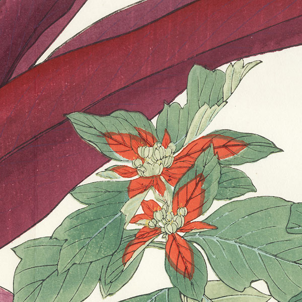 Poinsettia and Dracaena by Tanigami Konan (1879 - 1928)