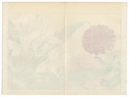 Zingiber and Zinnia by Tanigami Konan (1879 - 1928)