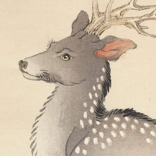 Deer by Bairei (1844 - 1895)