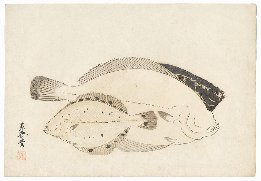 Flounder by Shin-hanga & Modern artist (not read)