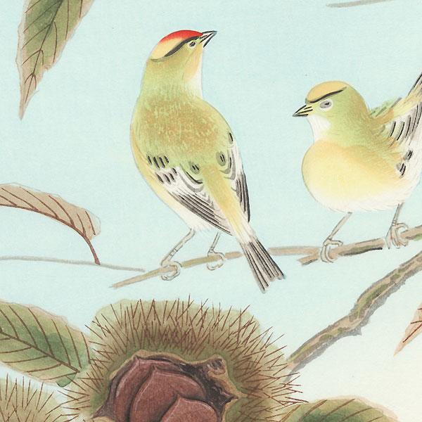 Kinglet and Chestnut by Shizuo Ashikaga (1917 - 1991)