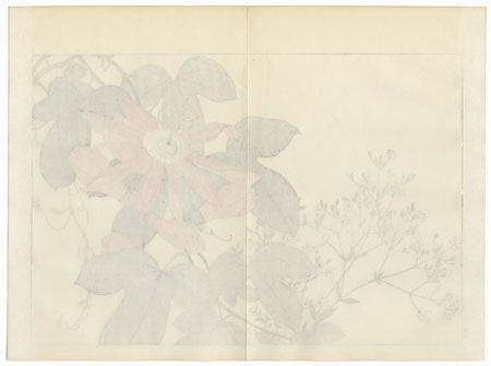 Drastic Price Reduction Moved to Clearance, Act Fast! by Tanigami Konan (1879 - 1928)