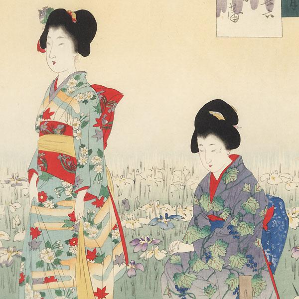 June: Iris Garden by Miyagawa Shuntei (1873 - 1914)