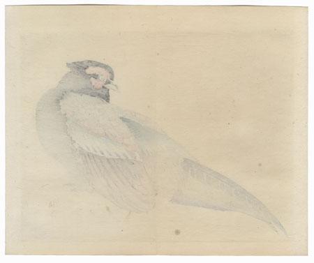 Pheasant by Bairei (1844 - 1895)