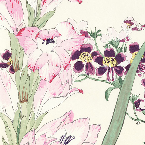 Schizanthus and Gladiolus by Tanigami Konan (1879 - 1928)