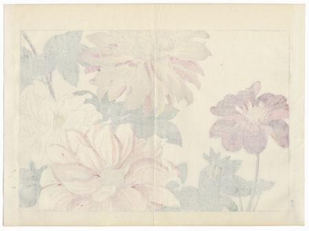 Dahlia by Tanigami Konan (1879 - 1928)