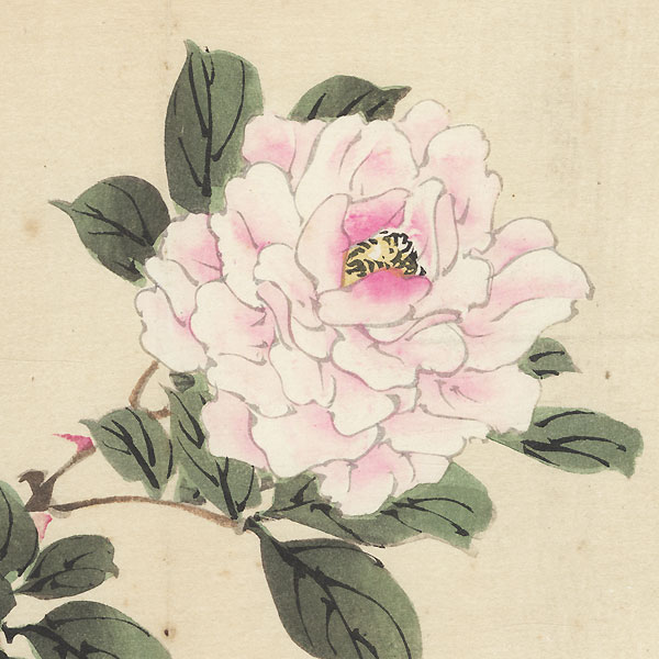 Rose by Bairei (1844 - 1895)