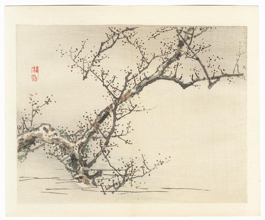 Plum Tree by Bairei (1844 - 1895)