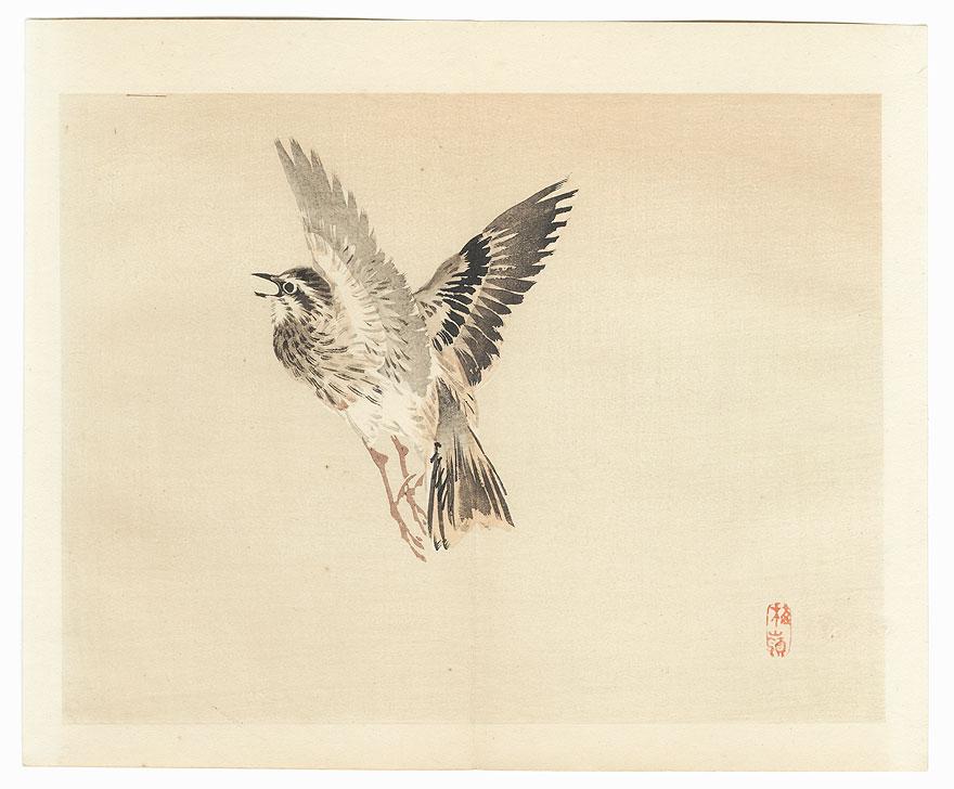Bird in Flight by Bairei (1844 - 1895)