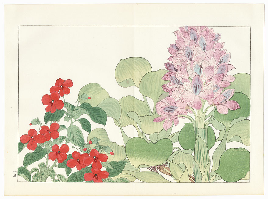 Water Hyacinthus and Impatiens by Tanigami Konan (1879 - 1928)