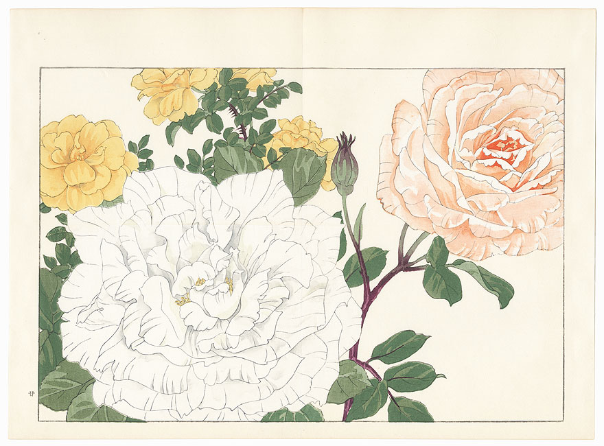 Rose by Tanigami Konan (1879 - 1928)
