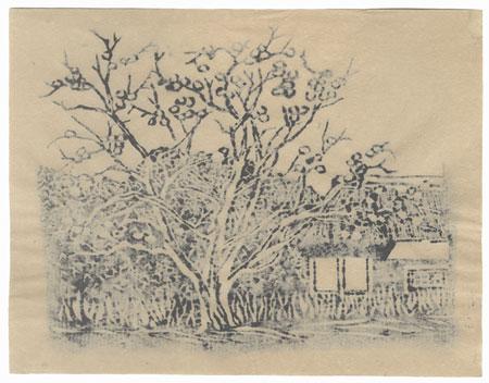 Persimmon Tree by Shin-hanga & Modern artist (unsigned)