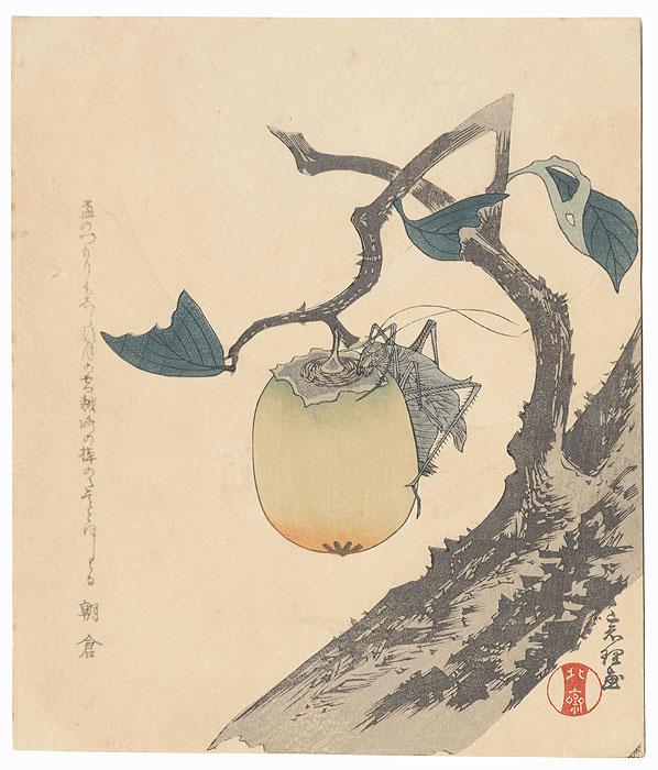 Grasshopper and Persimmon Surimono by Hokusai (1760 - 1849)