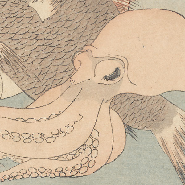 Octopus, Sea Brea, and Bonito Surimono by Setsuri (active circa 1820s)